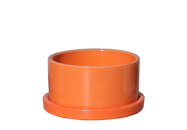 Picture of Short Cylinder Pot w/ Saucer
